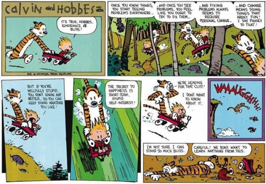 calvin-and-hobbes-its-true-hobbes-ignorance-is-bliss1