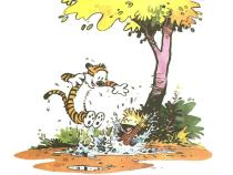 in-the-mud-calvin--26-hobbes-318677_1024_768