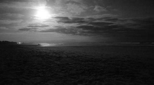 beach moonlit