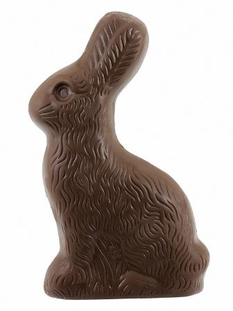 Choco bunnyFB